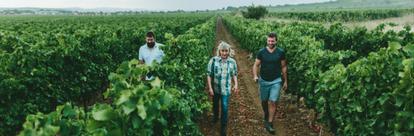 Les Vignerons de la Foire aux Vins