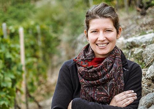 degustations vins domaine colombo rhone